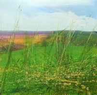 Placello Fields - Limited edition print
