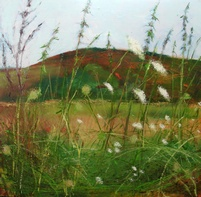 Placello Fields 2 - Limited edition print